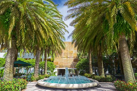 Merrick Fountain UM Campus